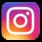 Instagram Logo ASC Vision></a></p> <p class=